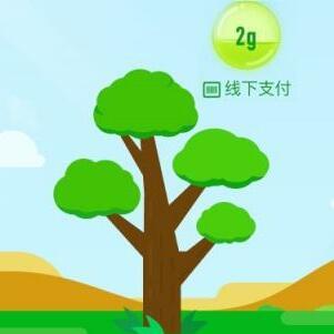 支付宝蚂蚁森林种树1314万棵