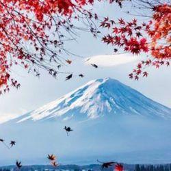春秋航空 上海-日本多地往返