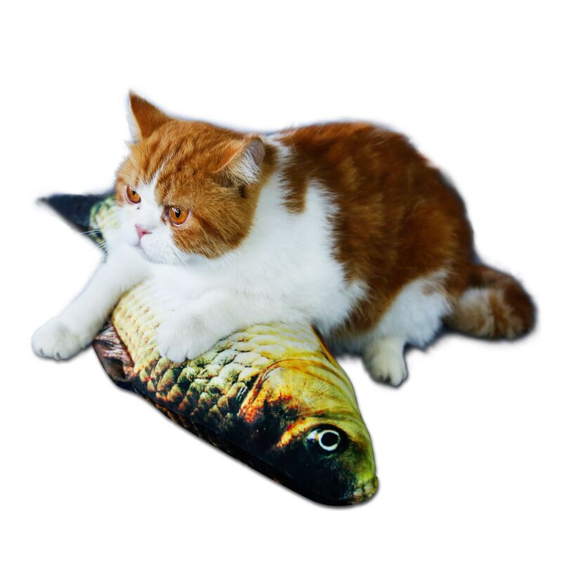 鲫鱼玩具20cm 送猫薄荷