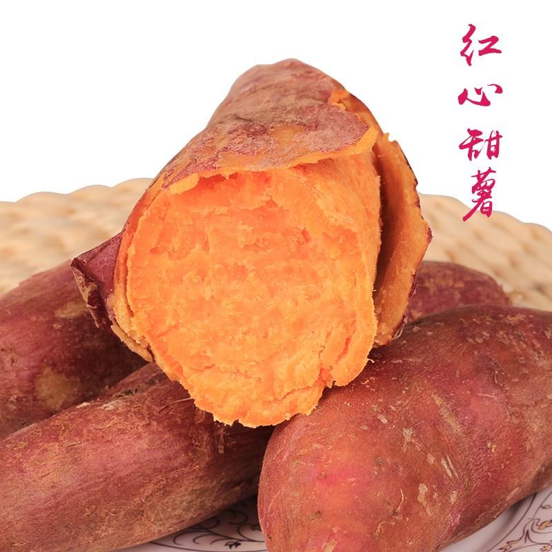 10斤新鲜板栗红薯